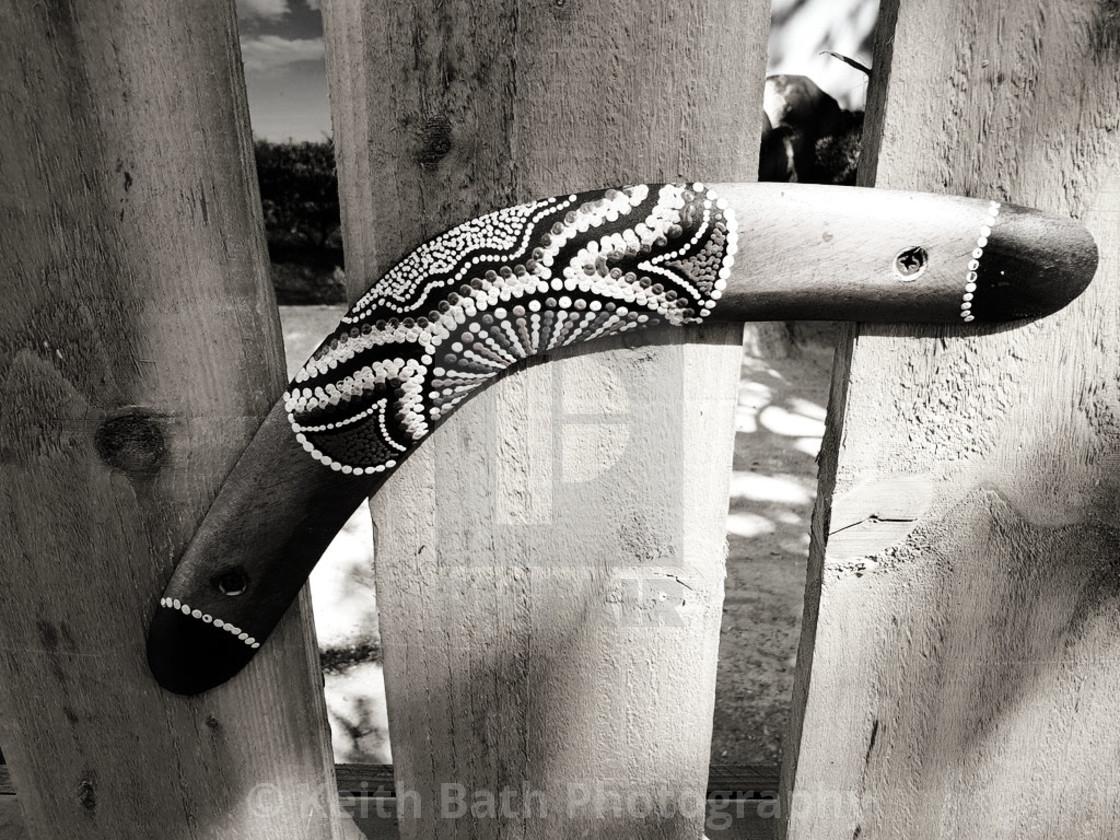 Boomerang spotted at Paradise Wildlife Park, Broxbourne