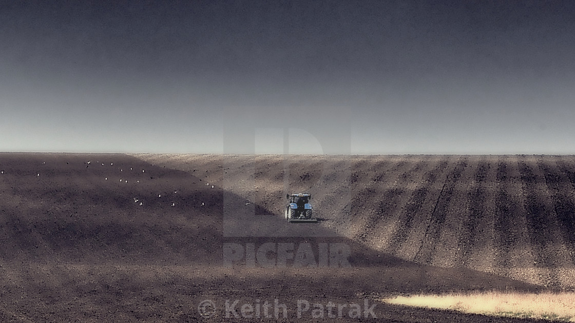 Springtime Ploughing