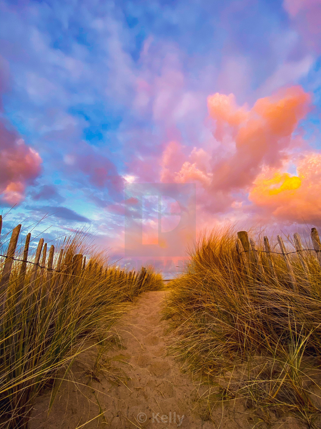 """""""Cotton Candy Sky Herd Sand"""" stock image"""