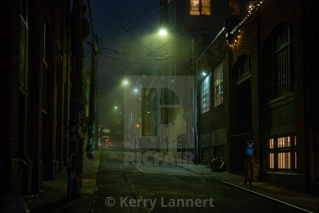 """""""Alley Cat"""" stock image"""