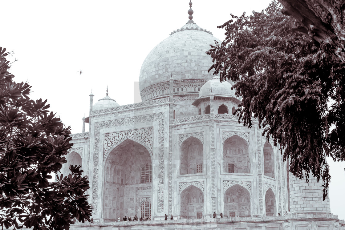 """Taj Mahal 7"" stock image"