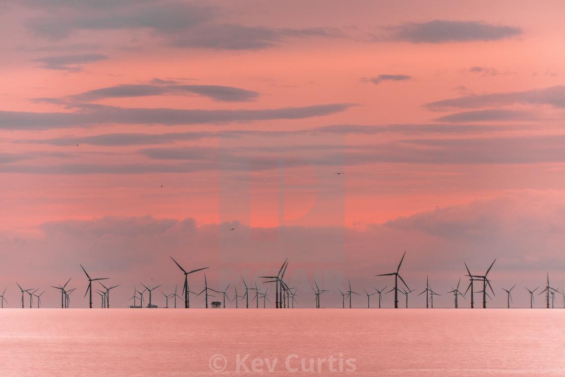 """""""Windfarm at dusk"""" stock image"""