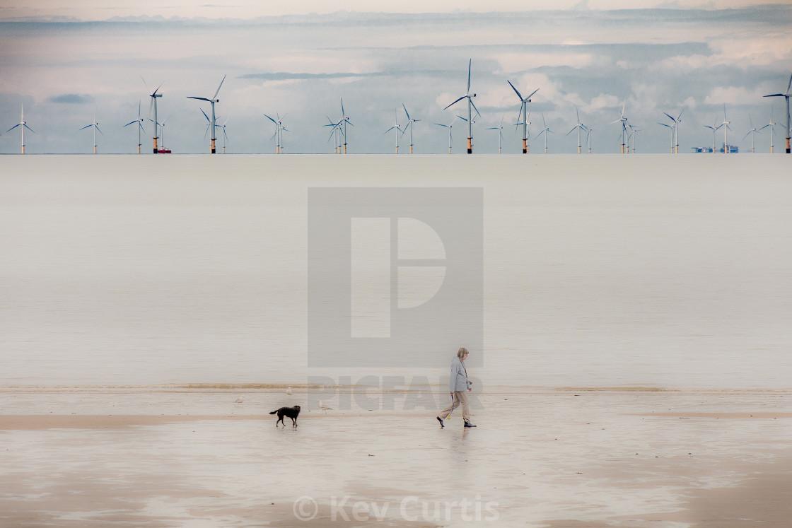 """Dog-walking along the beach"" stock image"