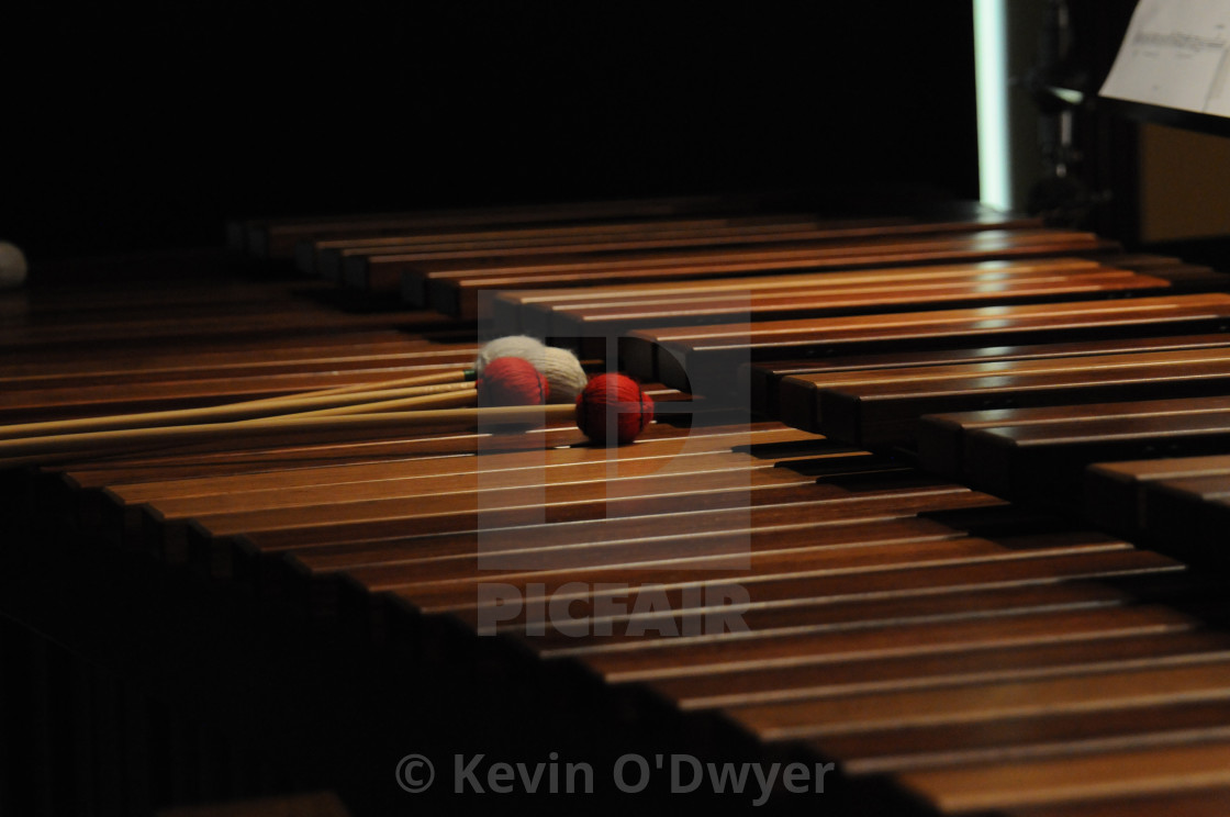 """Xylophone Still life"" stock image"