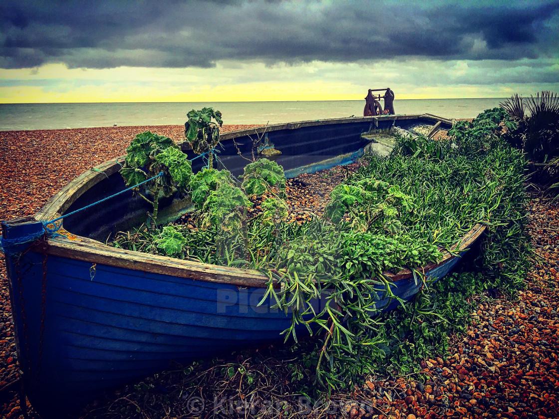 """""""Brighton Shipwreck"""" stock image"""