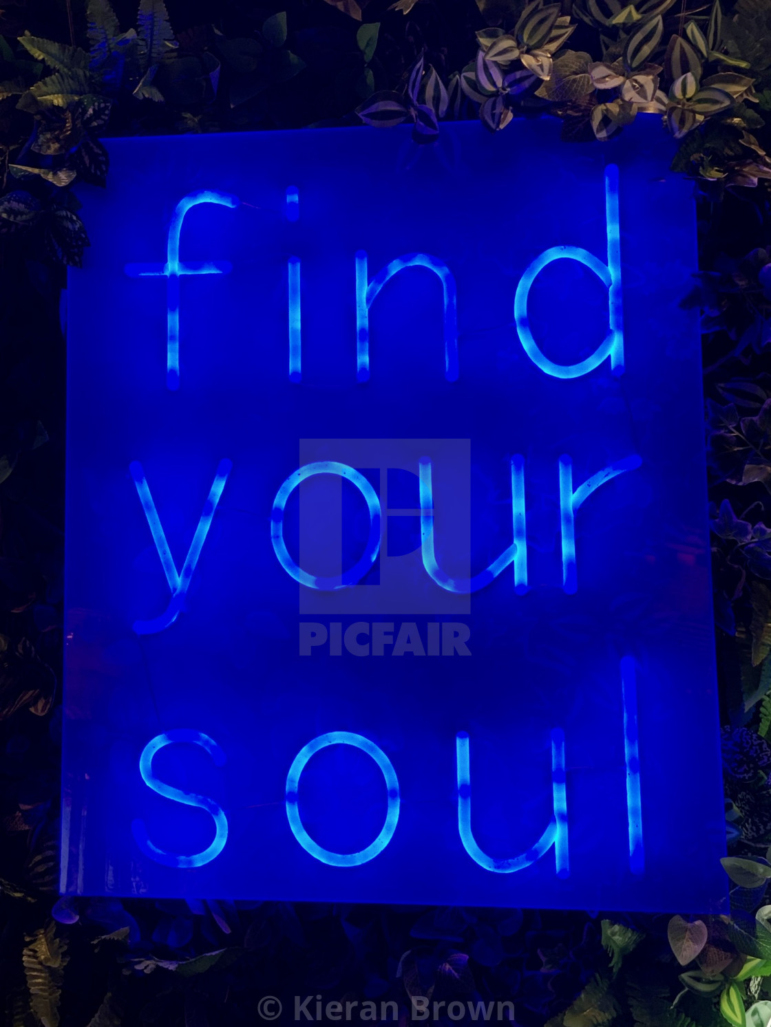 """Find Your Soul"" stock image"