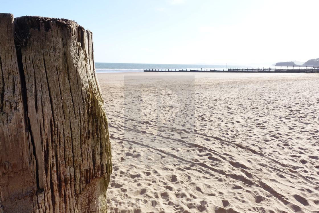 """UK Beach Scene Devon, sea wood"" stock image"