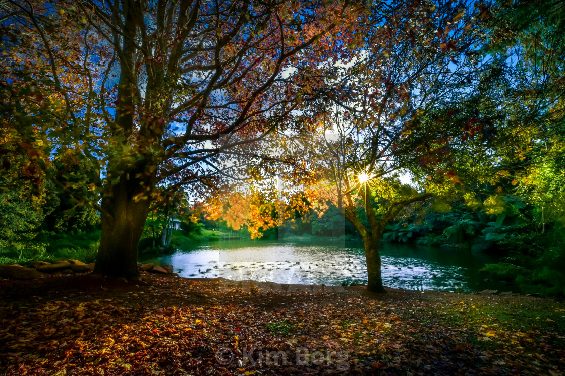 """""""Autumn Afternoons"""" stock image"""