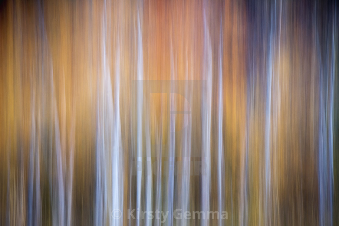 """Abstract Autumn"" stock image"