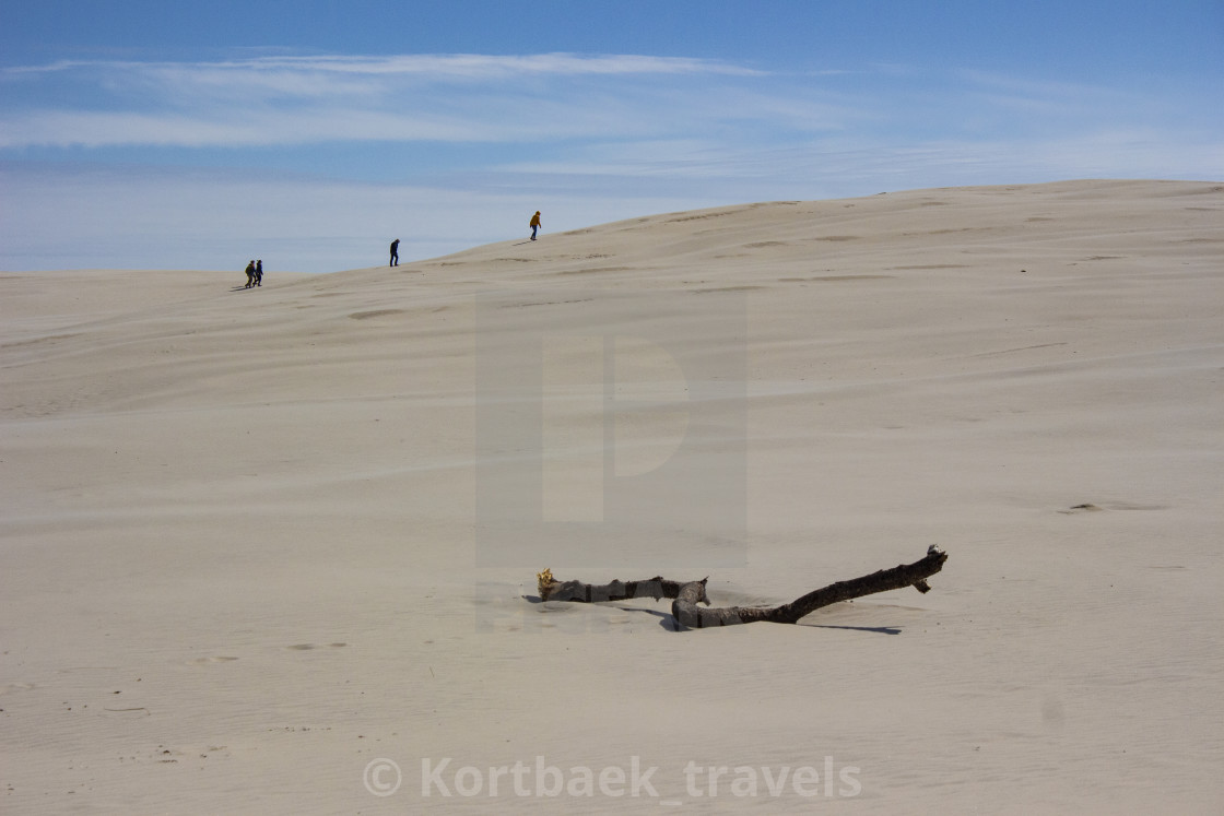 """Trekking on the Danish desert I"" stock image"