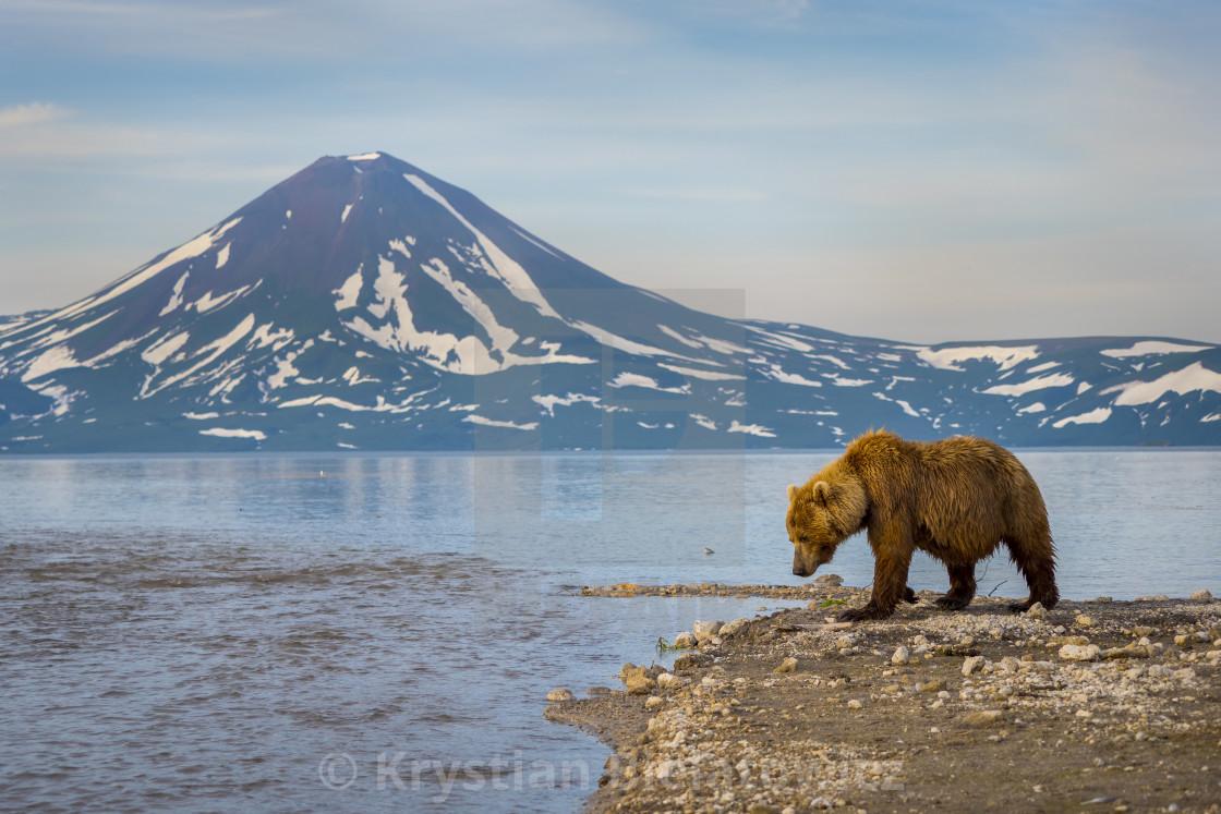 """""""Kamchatka, Russia"""" stock image"""