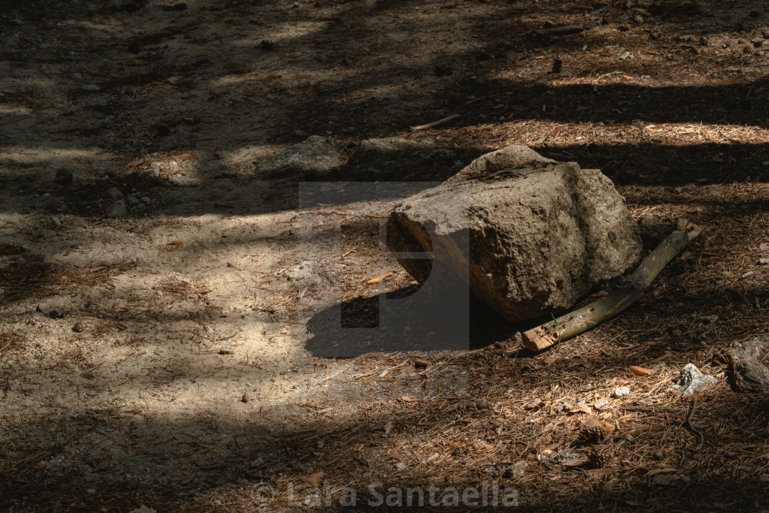 """""""A lonely boulder"""" stock image"""