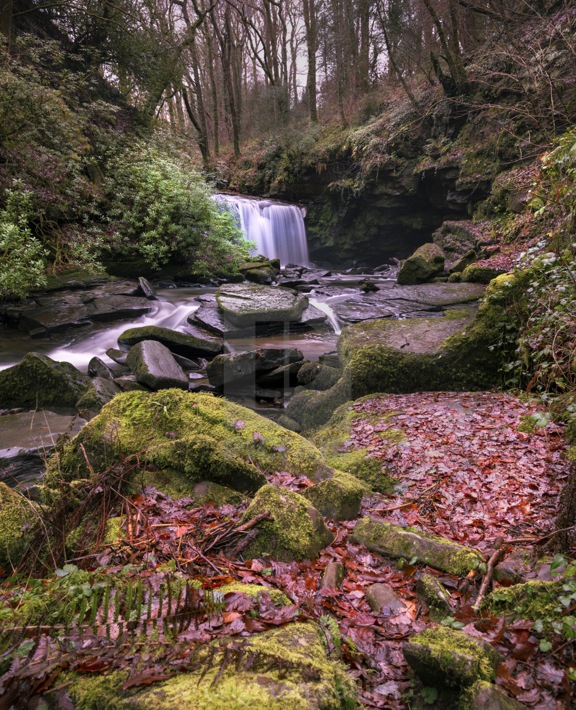 """""""Autumn colours on the River Clydach"""" stock image"""