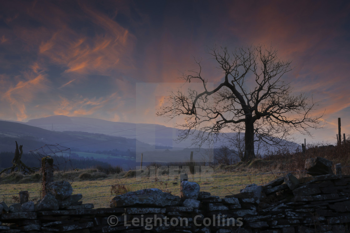 """""""Morning on the Gwrhyd mountain"""" stock image"""