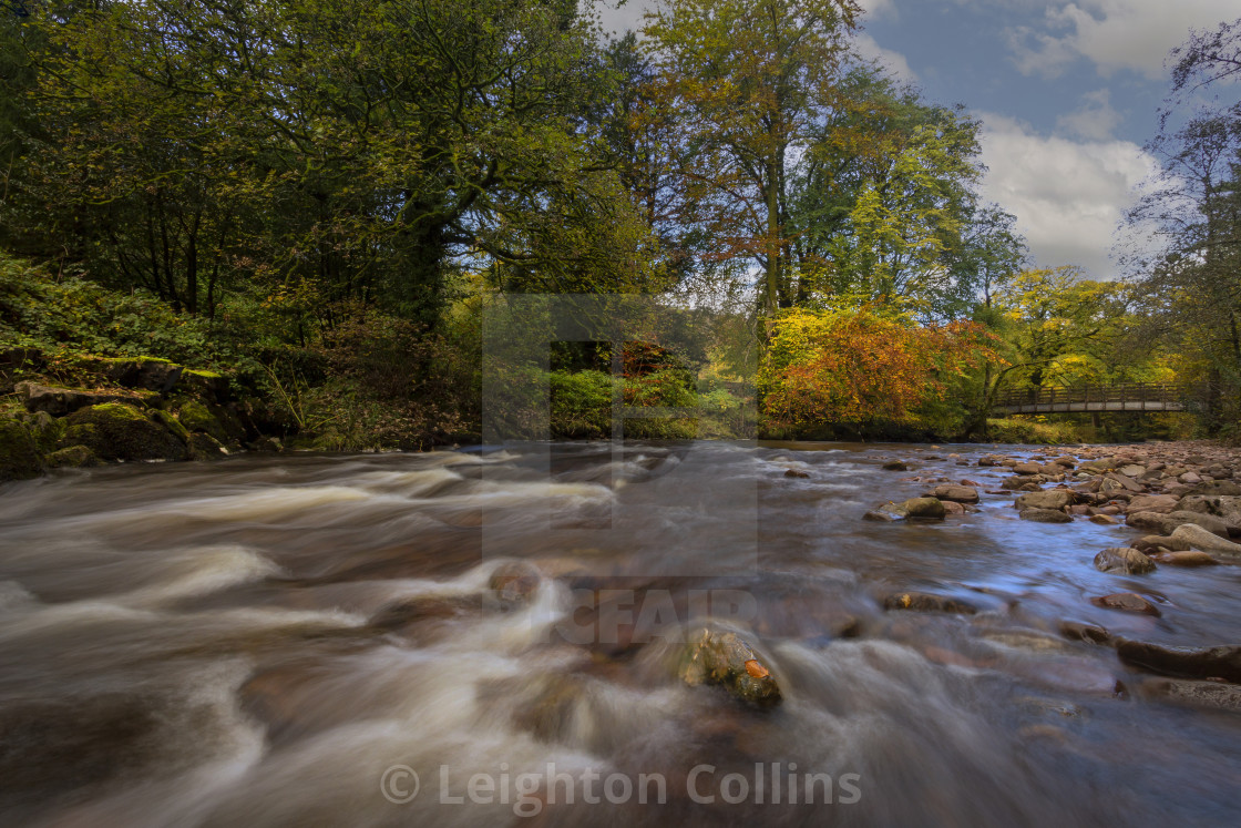 """""""Autumn on the river Tawe"""" stock image"""