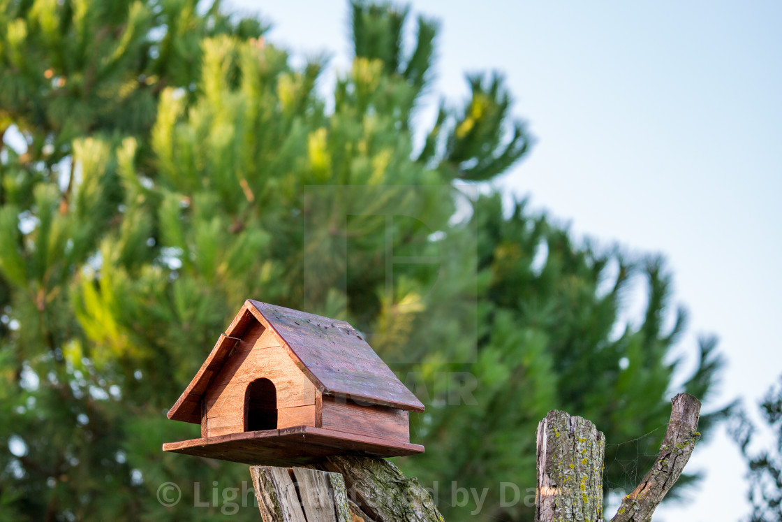 """Wooden bird house on dry tree trunk"" stock image"
