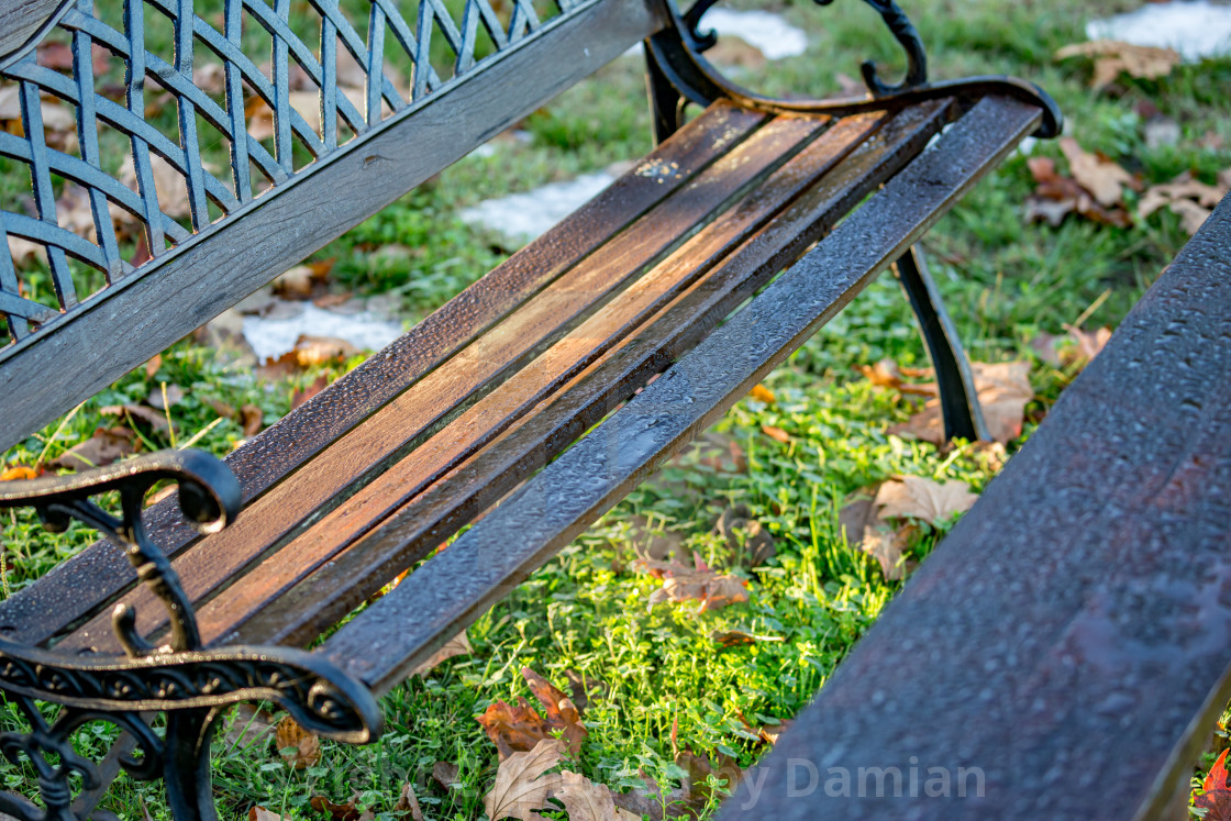 """Water drops after rain on wooden bench"" stock image"