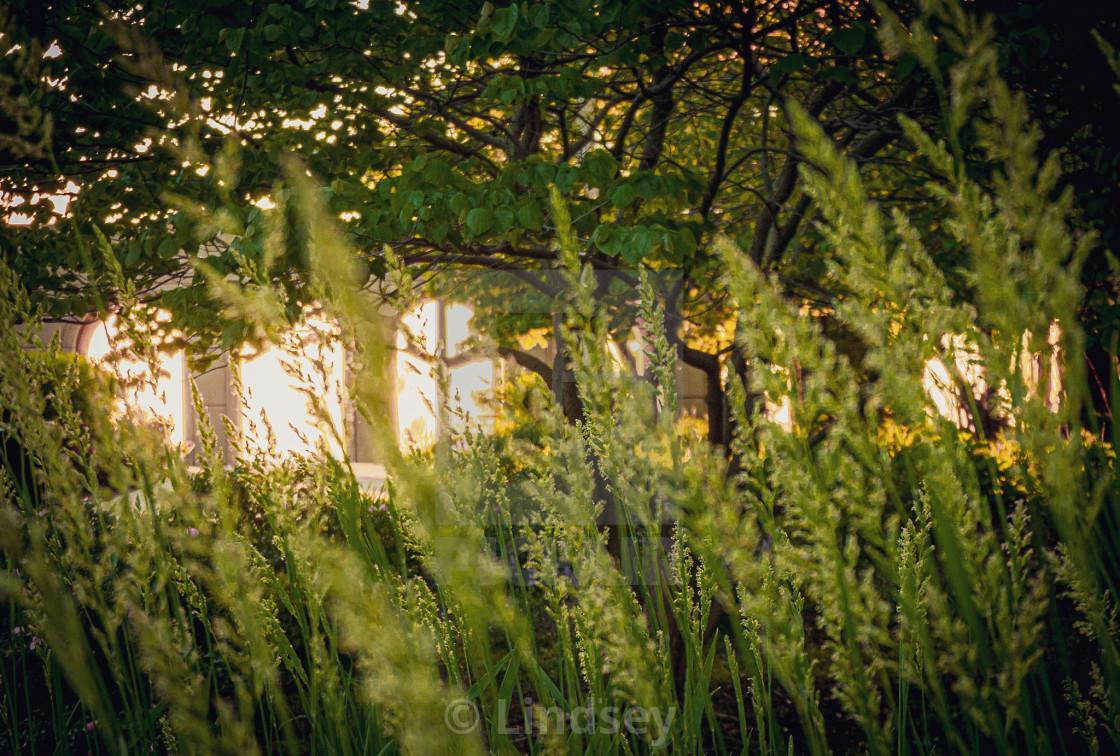 """Sunrise Serenity"" stock image"