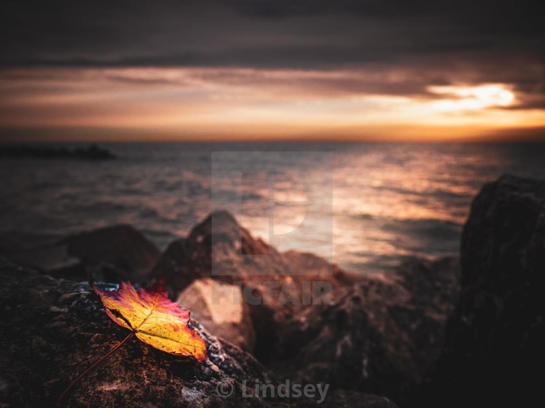 """Sunrise Spotlight"" stock image"