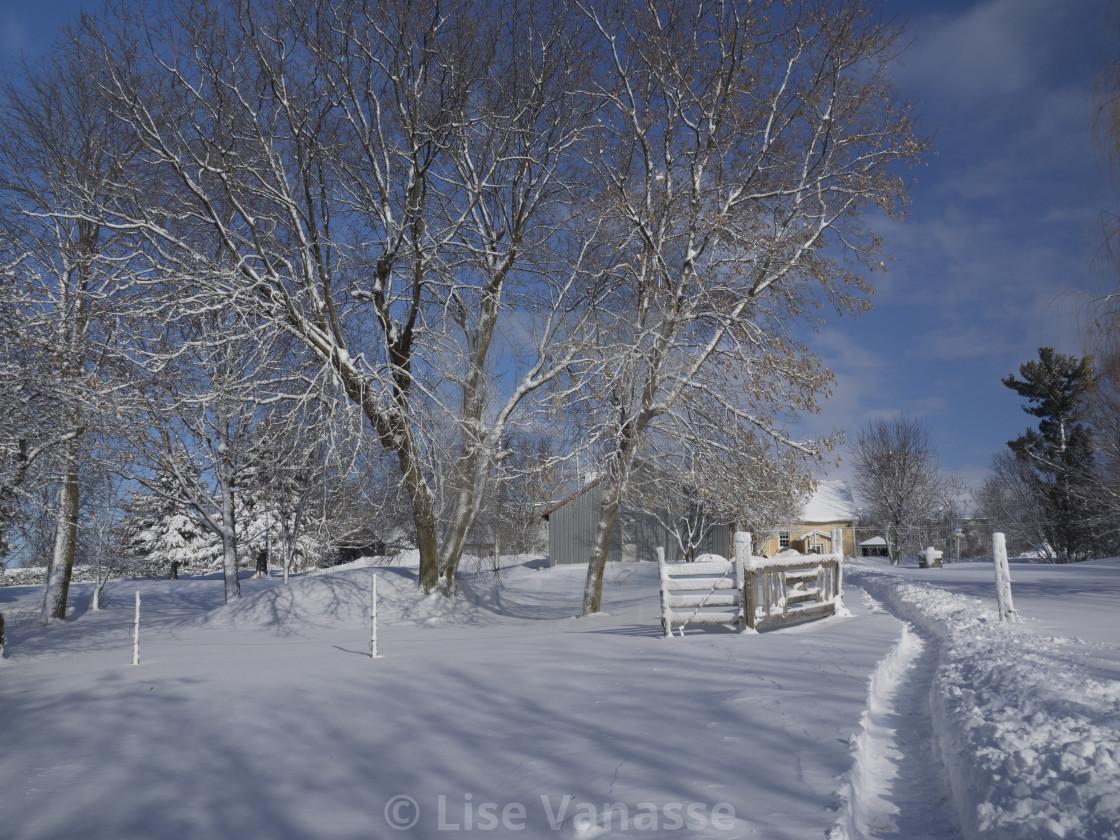 """A snowfall buried the yard."" stock image"