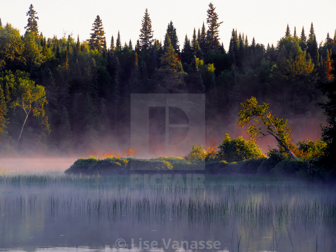 """The mist on the lake."" stock image"