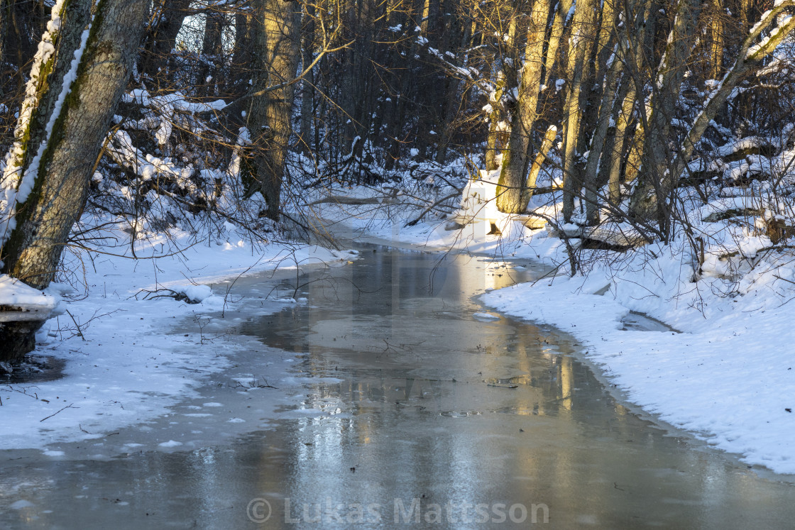 """""""Frozen river in the woods"""" stock image"""