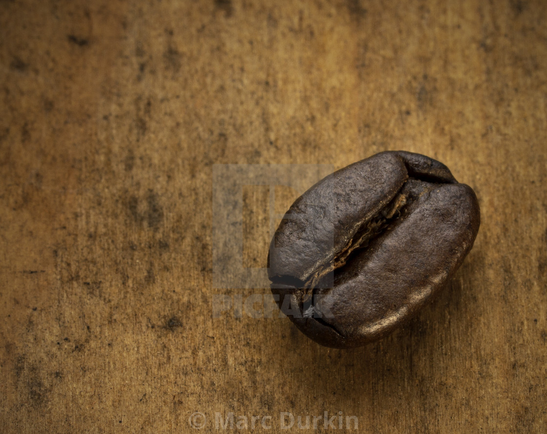 """Roasted coffee bean"" stock image"