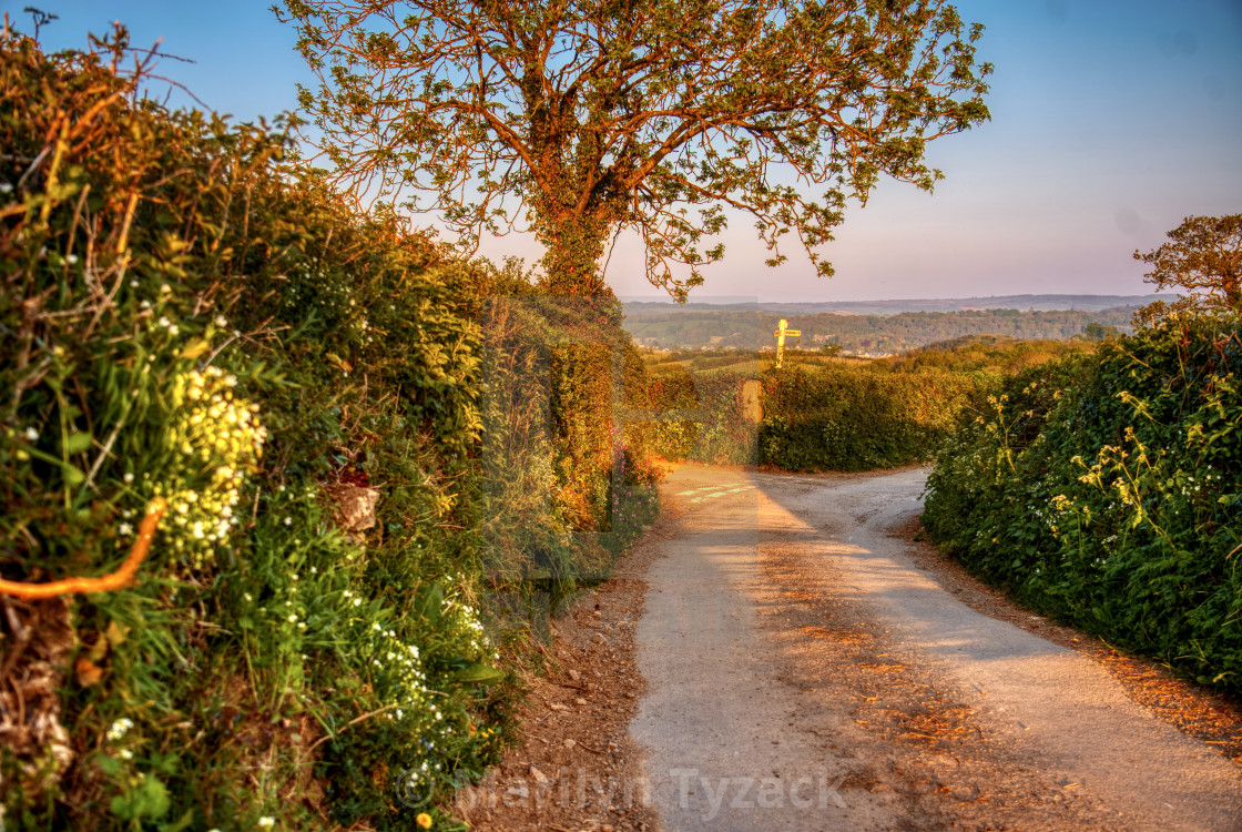 """""""Crossroads in the country lane"""" stock image"""