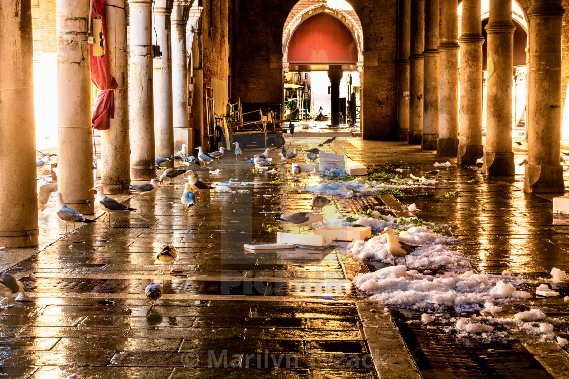 """""""After the fish market in Venice"""" stock image"""