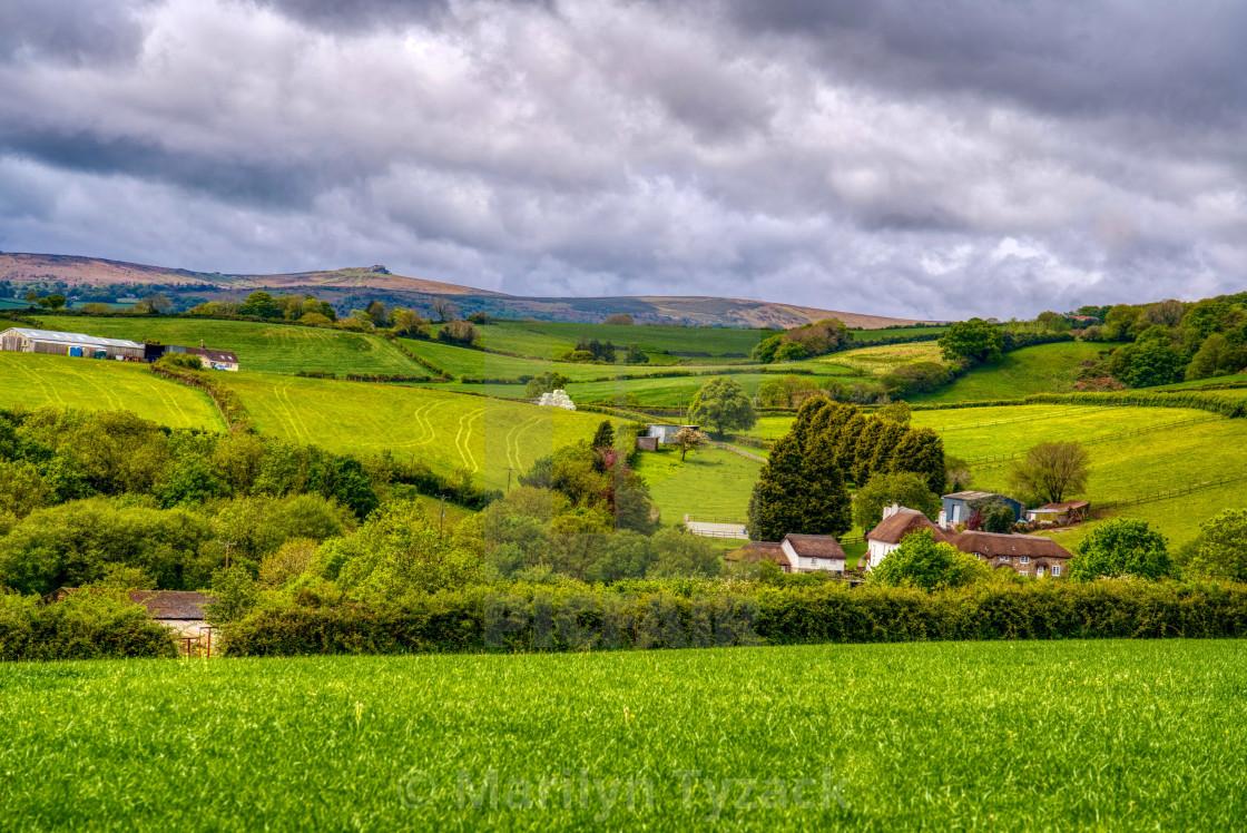 """""""Rural scene"""" stock image"""