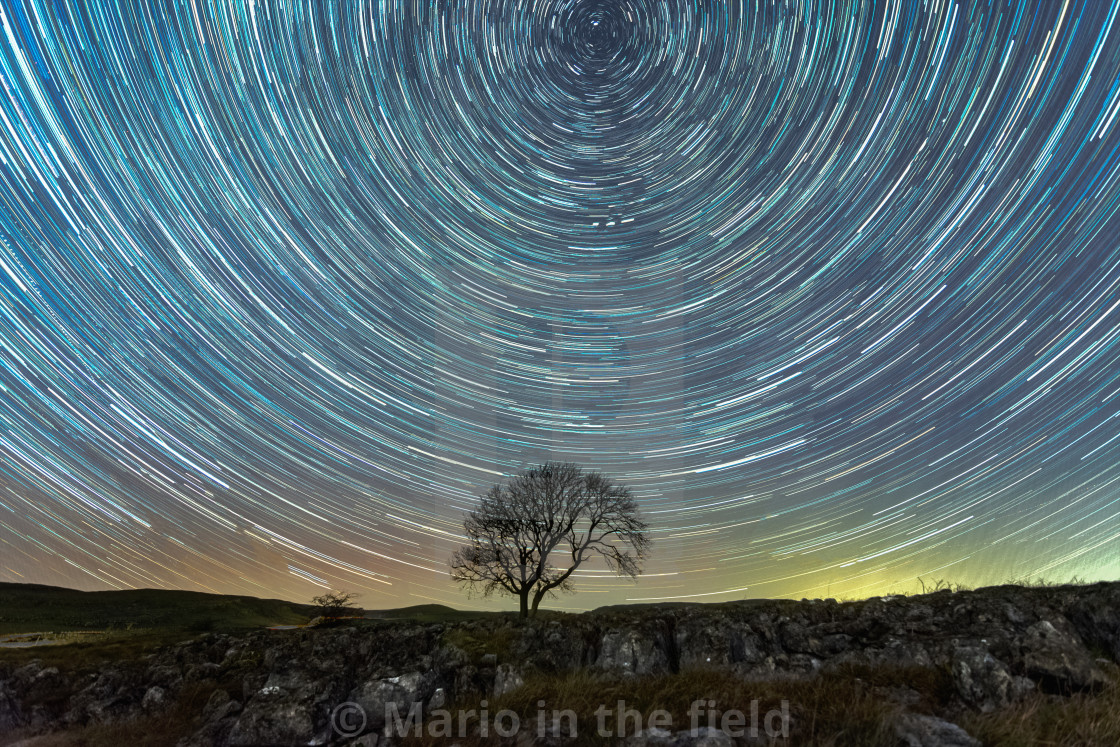 """Star trails and the lonely tree in Malham"" stock image"