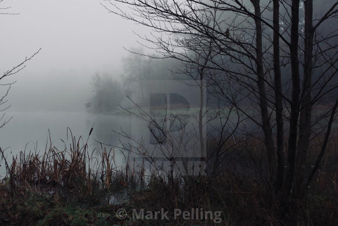 """Mist on the lake at Ewshot 01"" stock image"