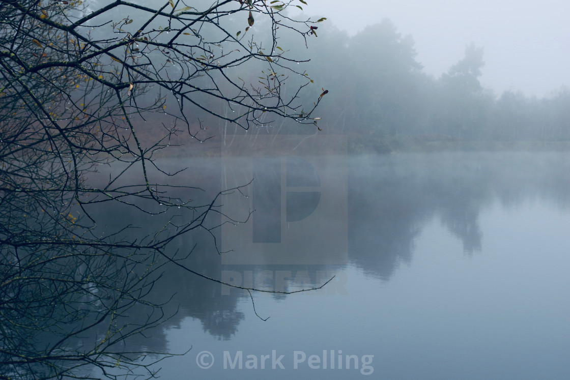 """Lake at Ewshot, England, on a foggy day"" stock image"