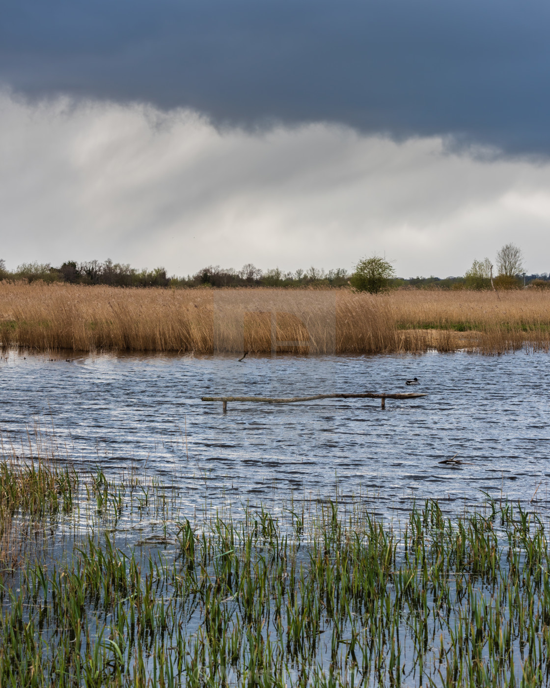 """Rainclouds over fenland ii"" stock image"