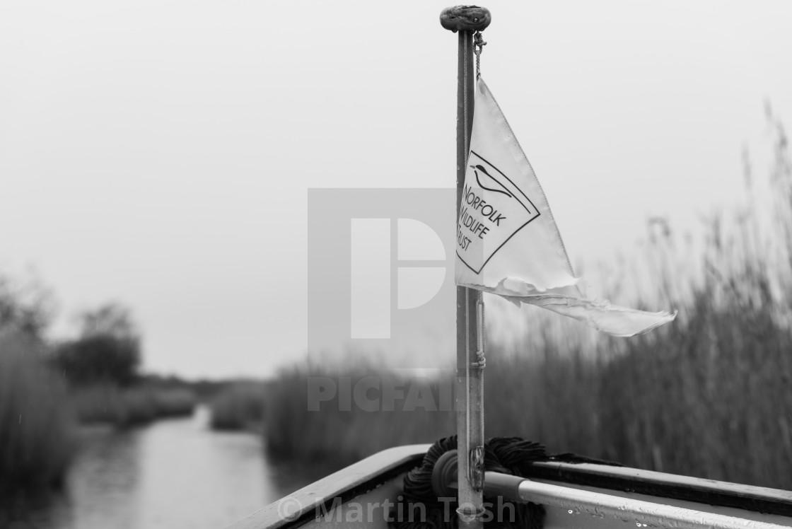 """Norfolk Wildlife Trust, marshland boat trip"" stock image"