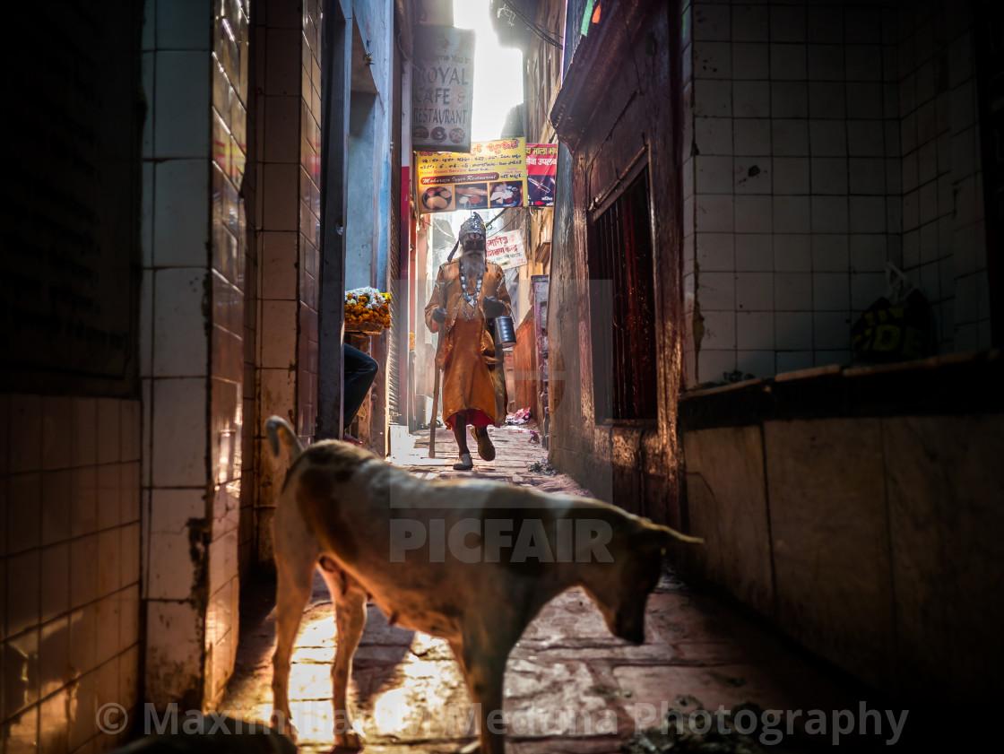 """""""Sadhu and dog"""" stock image"""