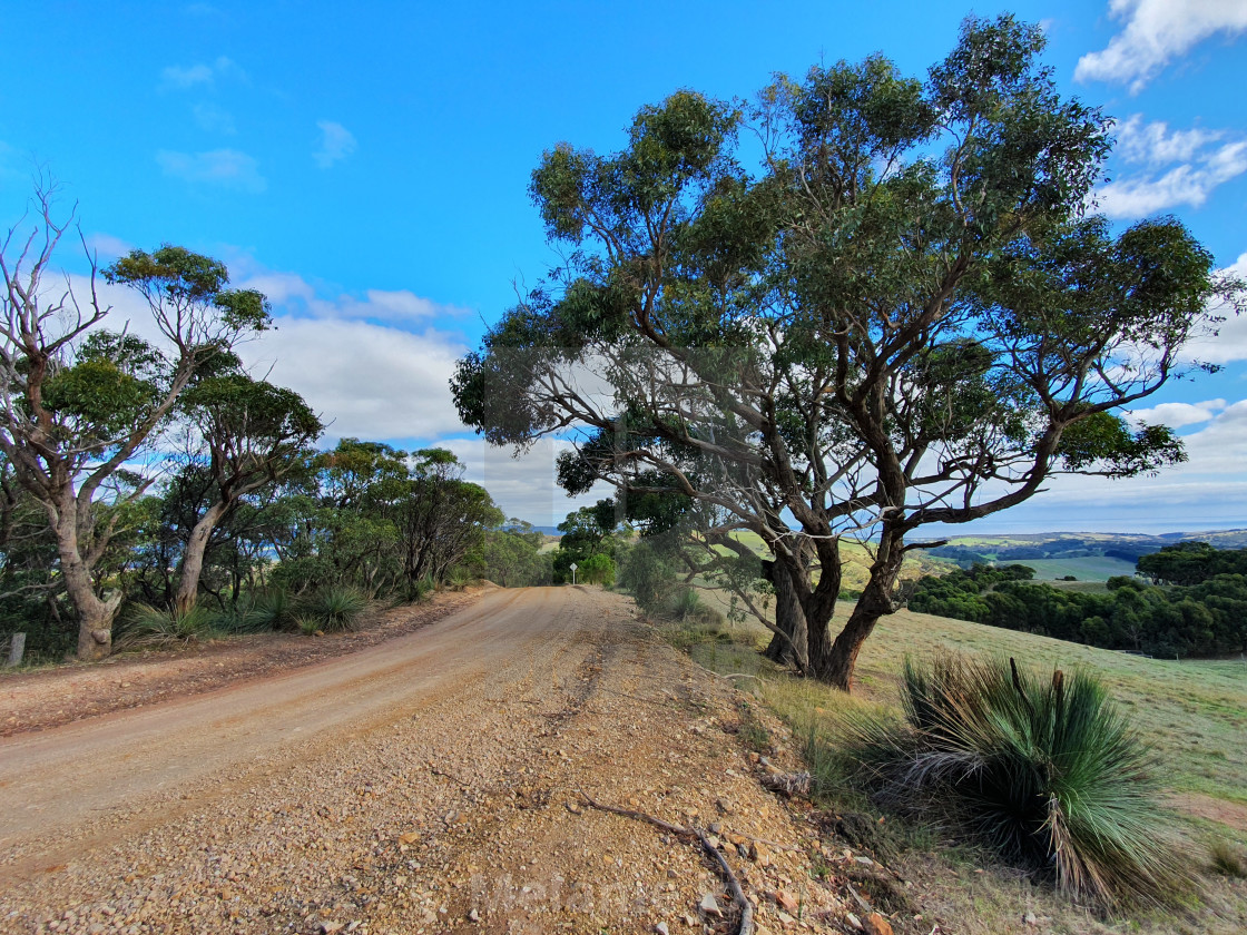 """Dirt road Fleurieu Peninsula South Australia"" stock image"