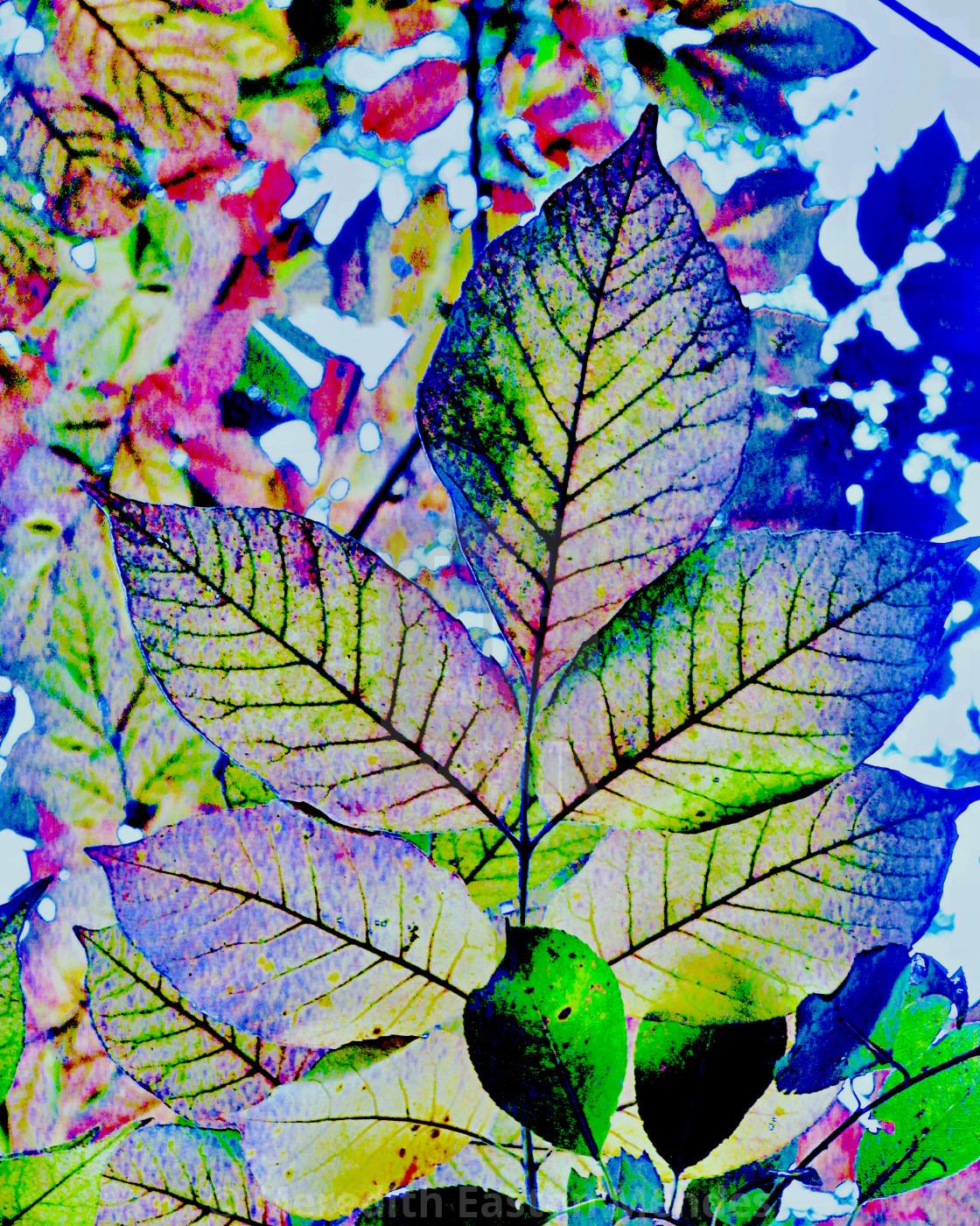 """""""Pastel leaf mosaic"""" stock image"""