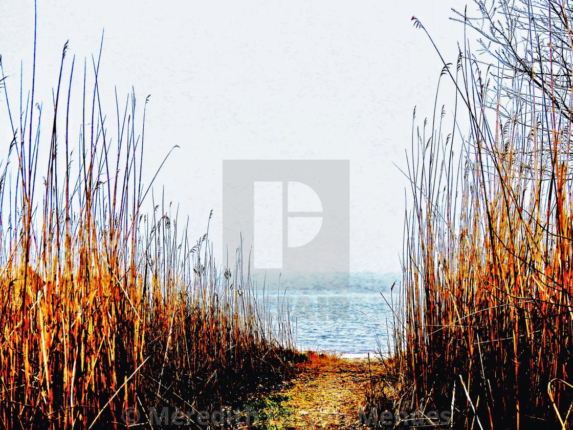 """Autumnal Beach Path"" stock image"
