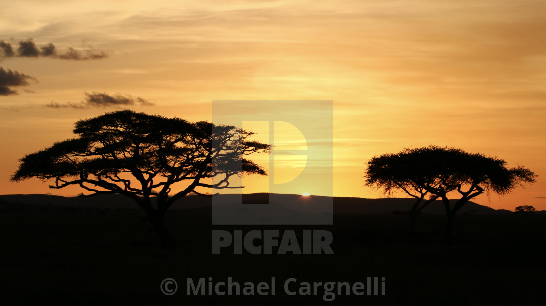 """Sunset on the Serengeti"" stock image"