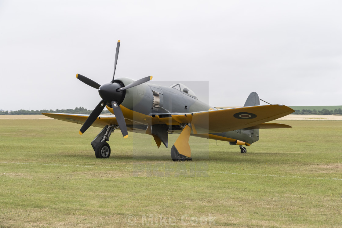 """Hawker Sea Fury"" stock image"