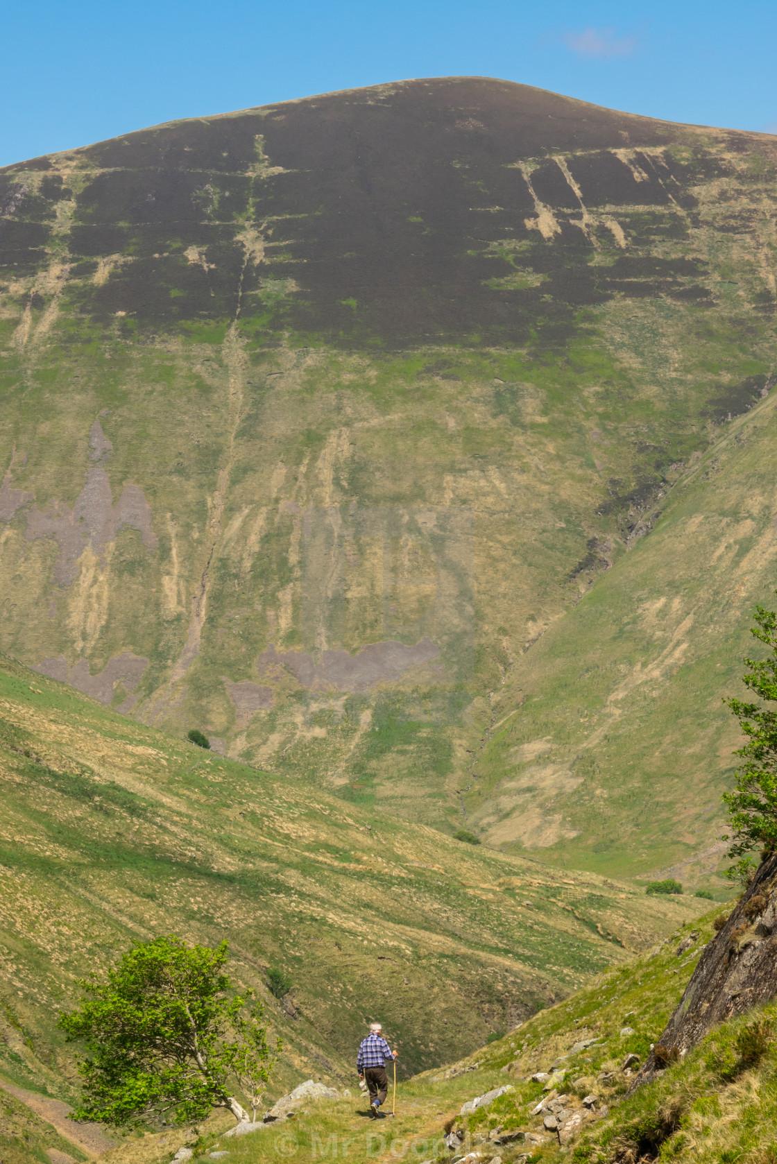 """Senior Man Hiking In The Scottish Countryside"" stock image"