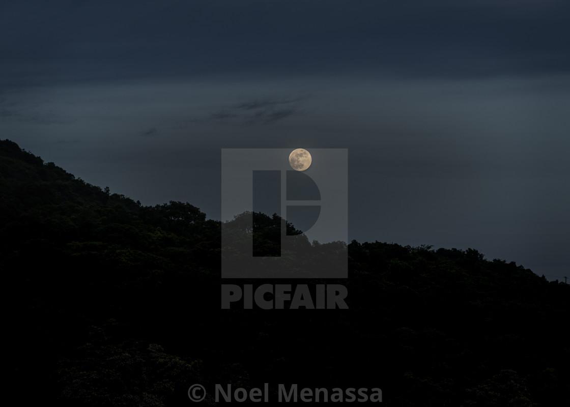 """Full Moon night"" stock image"
