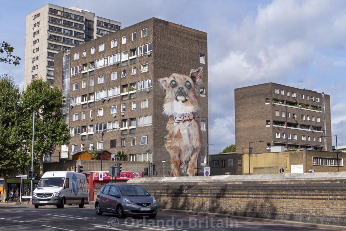 """Chihuahua streetart on tower block - Poplar"" stock image"