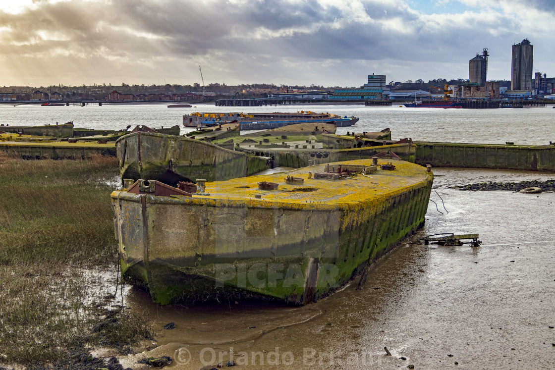 """Concrete Barges - Rainham Marshes"" stock image"
