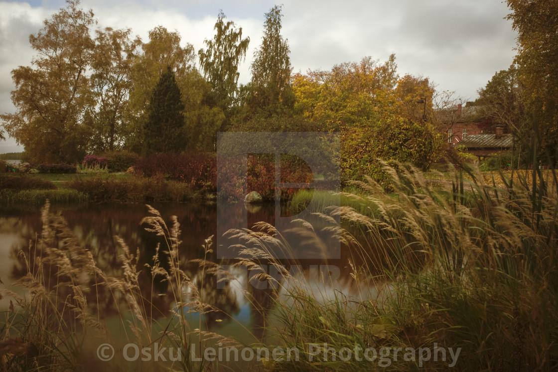 """Abundance IV (Pond And Grass)"" stock image"