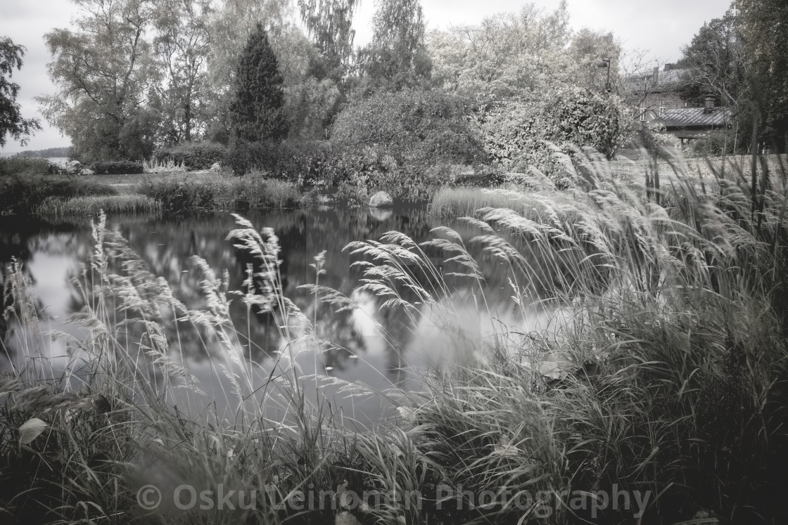 """Pond Black And White"" stock image"