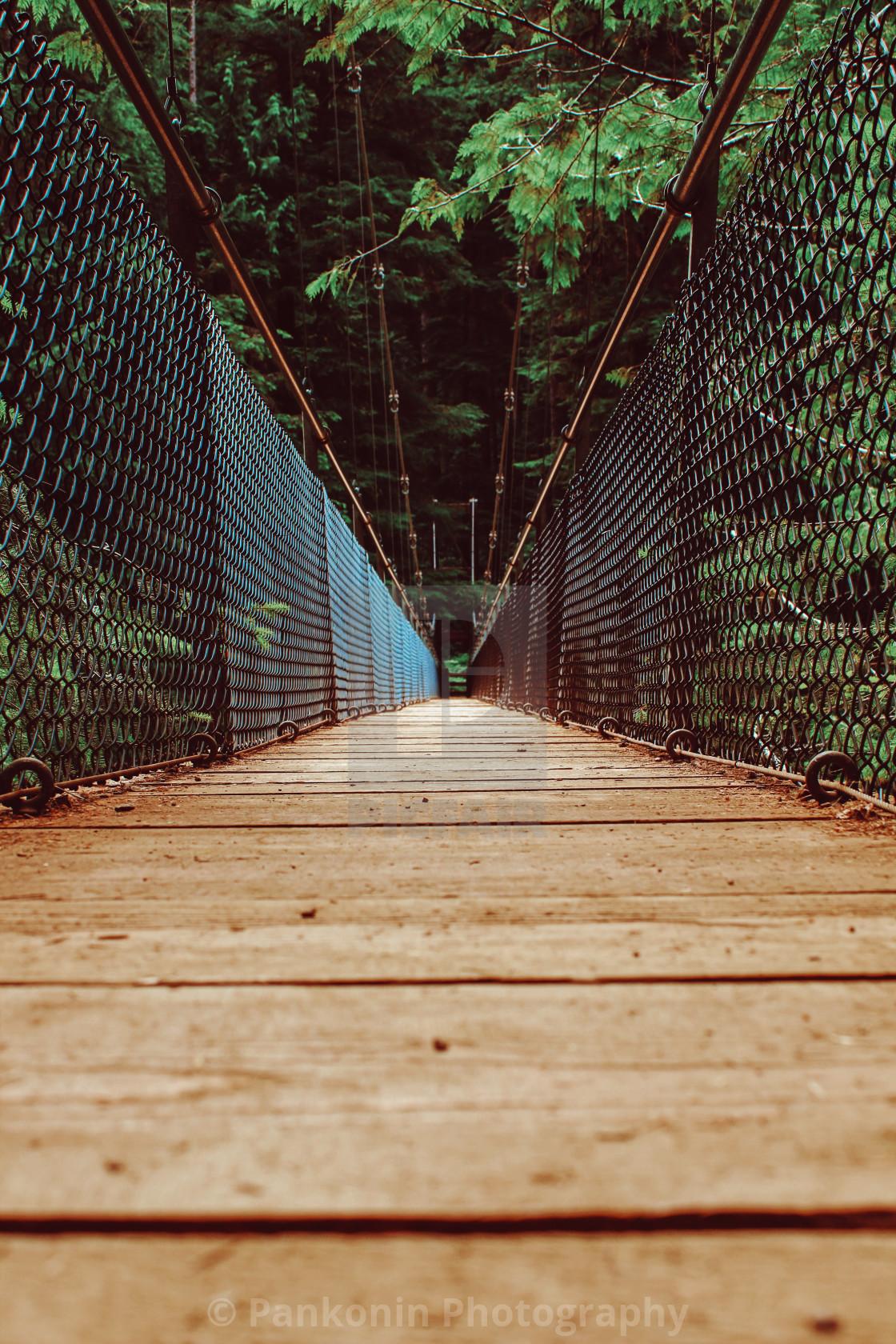 """Oregon forest bridge"" stock image"