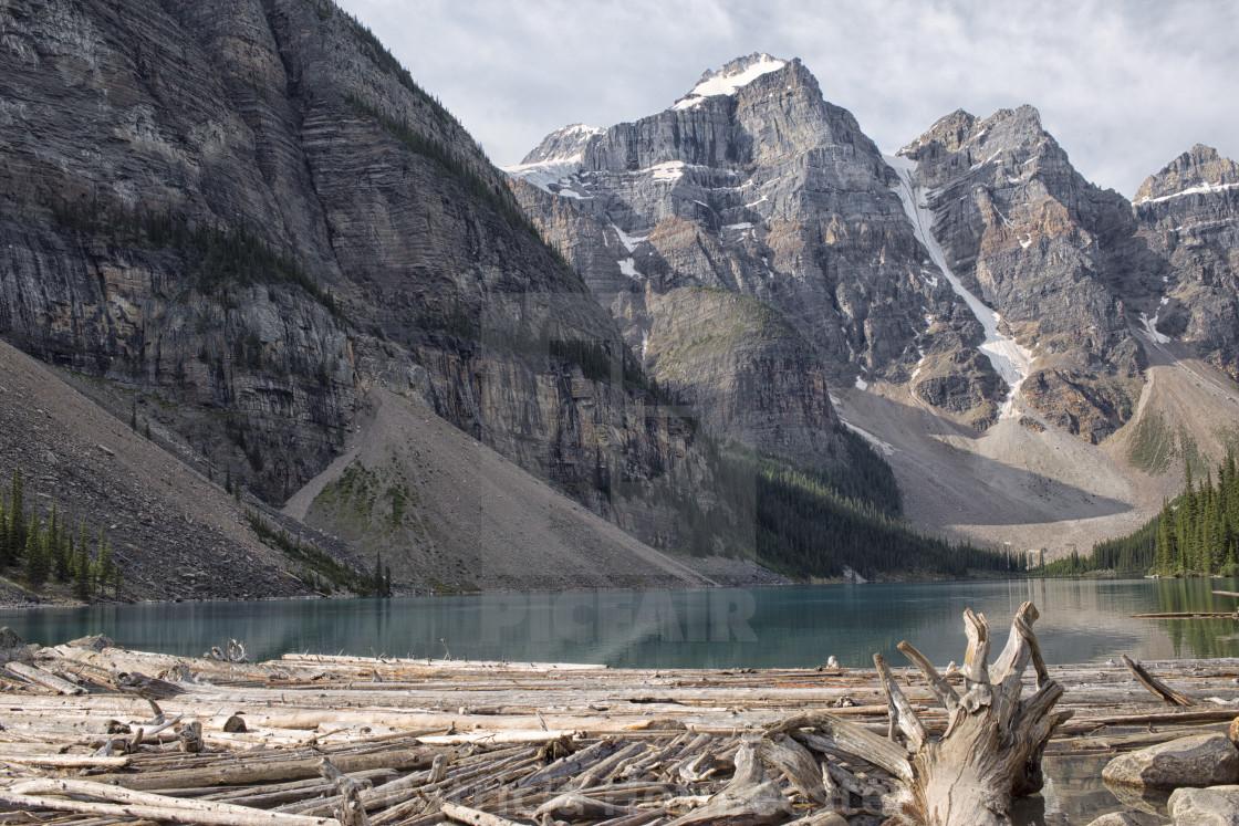 """Logs at Lake Moraine"" stock image"
