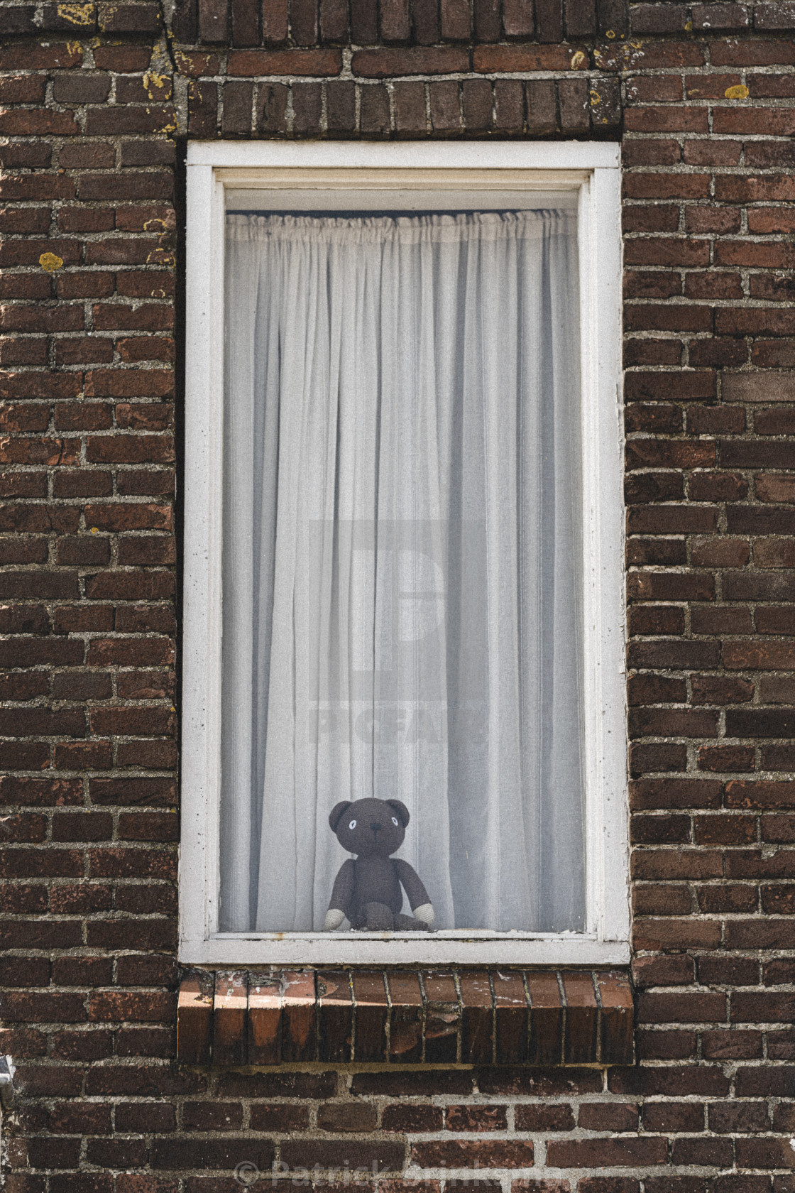"""Teddy bear in a window in a brick wall"" stock image"
